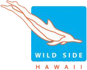 Wild Side Specialty Tours, Oahu, Hawaii Logo