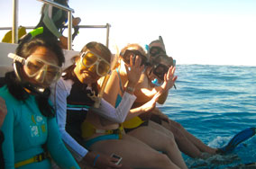 Ready to go snorkeling in Hawaii